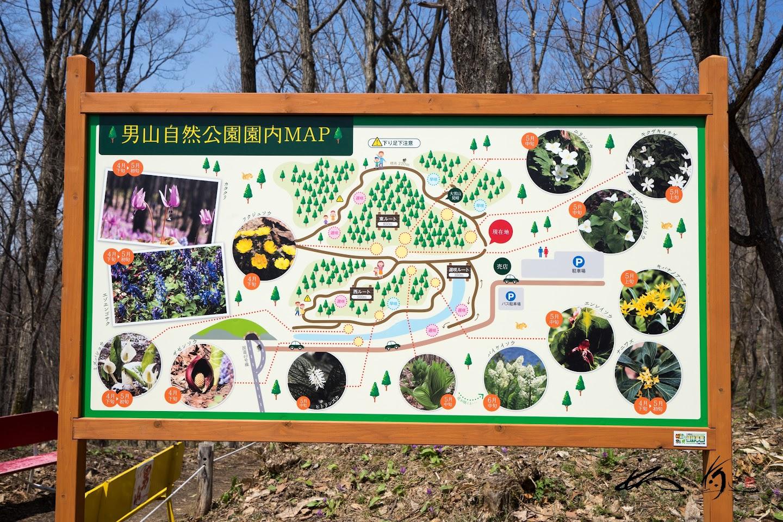男山自然公園園内マップ