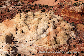 Photo: The Wave, Coyote Buttes, Arizona