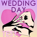 Wedding Day TEST (get married) icon