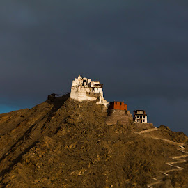 The Namgyal Tsemu Gompa, Leh, at sunset by Arunjeet Banerjee - Buildings & Architecture Places of Worship ( leh, namgyal tsemu gompa, blue hour, sunset, monastery, landscape photography, india, travel, ladakh, travel photography )