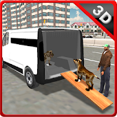 Pet Home Delivery Van