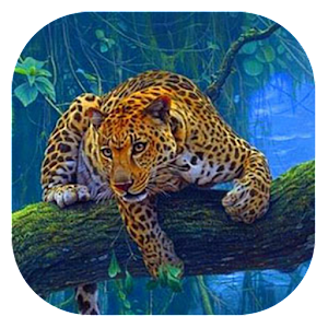 Leopard Live Wallpaper On Google Play Reviews Stats