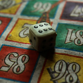 by Taeef Najib - Novices Only Objects & Still Life ( dice, ludo, game, fortune, gambling )