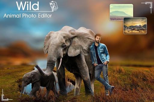 Wild Animal Photo Editor Animal Photo Editor App Apk Free