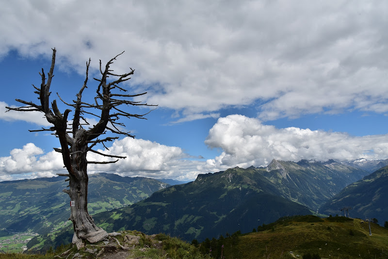 Saluti dalle montagne austriache di Ilaria Bertini