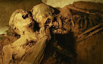 Photo: In this photo released by Sao Paulo's Museum of Sacred Art, two mummies lie in the basement of the Mosteiro da Luz Catholic church in Sao Paulo, Saturday, Feb. 23, 2008.  Restoration workers from Sao Paulo's Museum of Sacred Art discovered the mummies this month. (AP Photo/Angelita Loturco, Museum of Sacred Art)