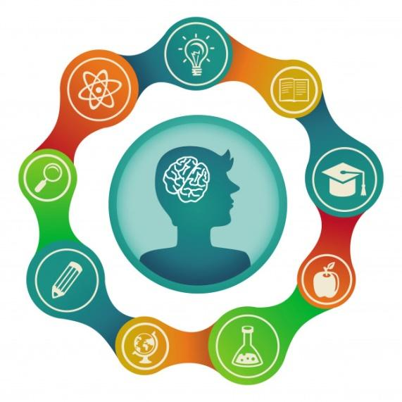 Vector education concept - brain and creativity Premium Vector