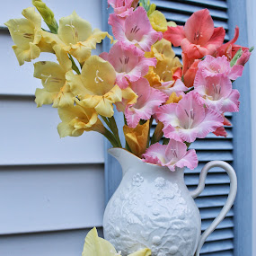 Glads for Mom by Jennifer Smusz - Flowers Flower Arangements ( #flowersbywindowshutter, #naturesbeauty, #gladiolas, #flowers, #flowersontable, #pitcherofflowers, #glads )