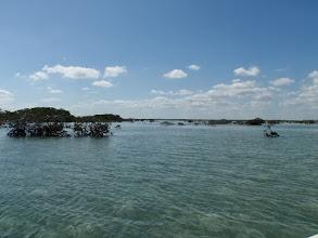 Photo: Shhhhh- we're hunting bonefish- MRO on Andros