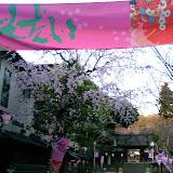 調布お花見マップ;深大寺周辺の桜写真