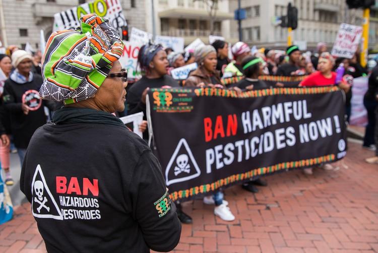 Verbied hulle nou! Plaaswerkers wil 67 plaagdoders verbied - SowetanLIVE