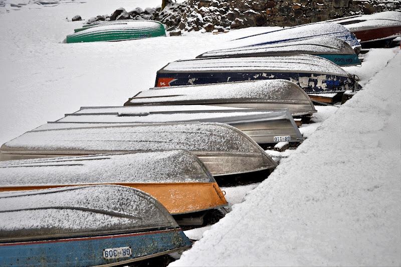 Neve a bassa quota  di smodale