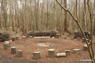 Photo: The Fire Circle in Catts Wood - used by the local school's Forest School activities