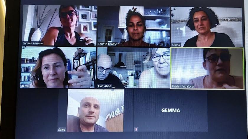 Algunos de los participantes en la reunión virtual de la junta directiva de Fapace, este viernes.
