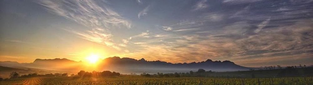 Things To Do in Stellenbosch - The Ultimate Guide 2017