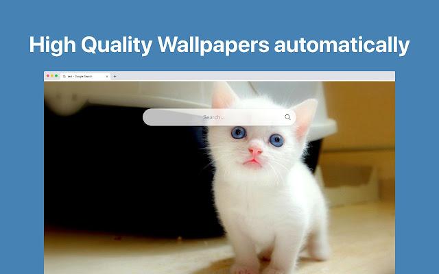 Cute Cats HD Wallpapers Custom Tab