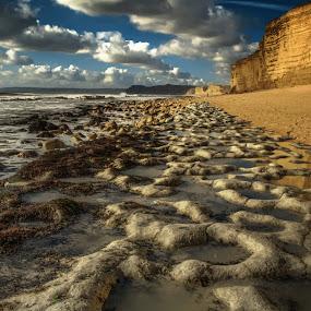 A Hidden World Revealed by Nigel Finn - Landscapes Beaches