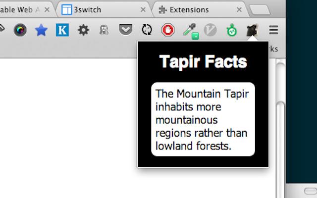 Tapir Facts