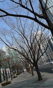 Seoul Wallpaper - náhled