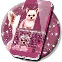 Chihuahua Keyboard icon