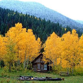 Mountain Hut* by Rob Bradshaw - Uncategorized All Uncategorized ( mountain hut, fall aspins, fall, hut, autumn aspins, cabin, autumn, mountain cabin, colorado, winter approaching )