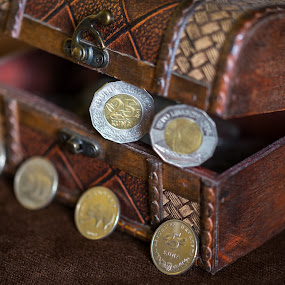 Small treasure by Ivica Bajčić - Artistic Objects Antiques ( personal, coins, treasure, croatia, money, chest, photography )