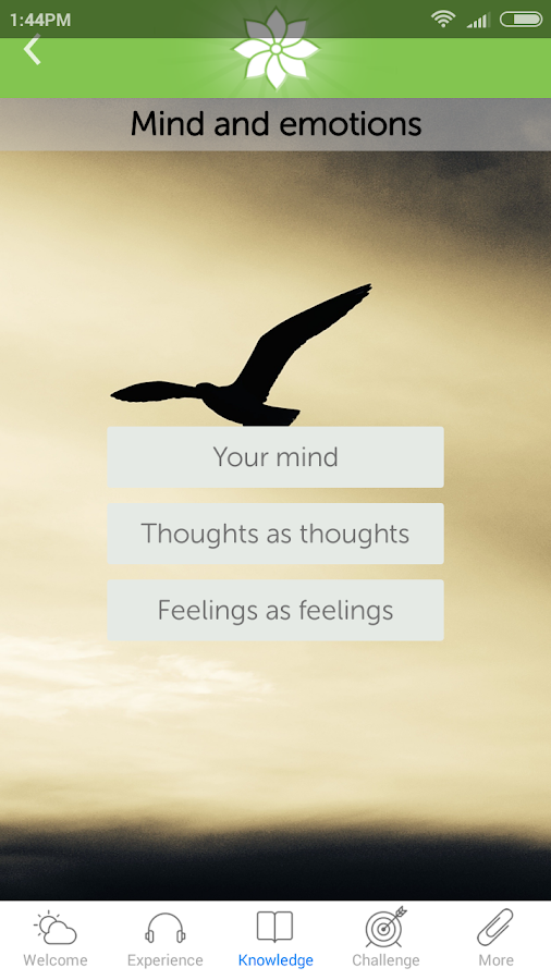 Mindfulness: The Art of Being- screenshot