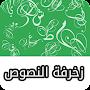 زخرفة النصوص العربية