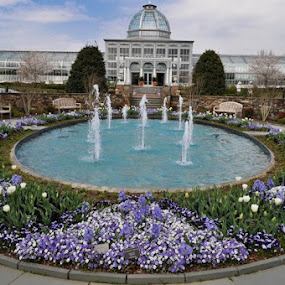 Lewis Ginter Botanical Gardens - Richmond, Virginia by Heidi Austin - Novices Only Flowers & Plants