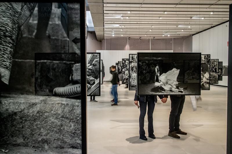 Cronaca Nera ,  a Letizia Battaglia . di D. Costantini