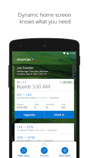American Airlines Screenshot