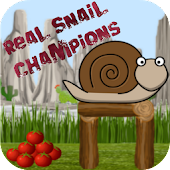 Real Snail Champions