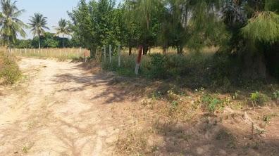 Land pattaya sale:ขายที่ดินพัทยา ขายที่ดินห้วยใหญ่