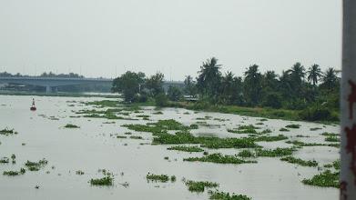 Photo: Dòng sông Sái Gòn êm đềm chảy qua một thị trấn vườn Lái Thiêu