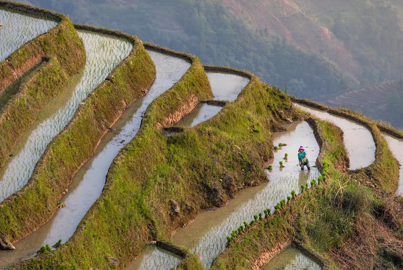 Yuanyang rice terraces di Marco Tagliarino
