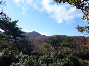 日本庭園のような広場