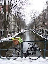 Photo: Amsterdam. Bloemenfiets. Foto: onbekend