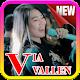 Download Lagu Via Vallen - Senorita | Offline + Lirik For PC Windows and Mac