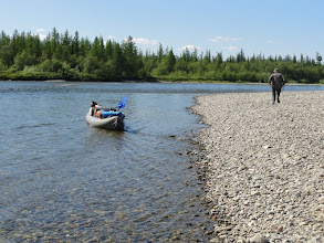 Photo: Каменистый бечевник, Волк тянет лодку корабликом.