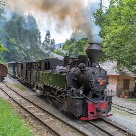 by Waldemar Dorhoi - Transportation Trains