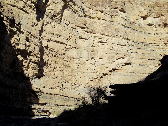 Big wall in Trail Canyon, with Wade in the lower-left for scale