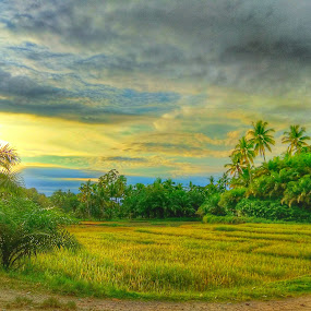 Minang Land by Evan Septian - Landscapes Prairies, Meadows & Fields