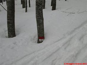 Photo: IMG_2164 oh cazzo, questo vuol dire nevicare