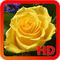 Roses Wallpapers icon
