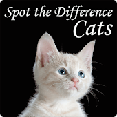 Cat`s - Spot the Difference