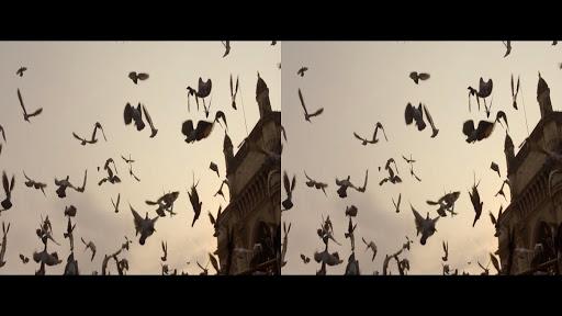 VR Video Player screenshot