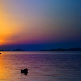 Fishing at sunset by Goran Kojadinovic - Landscapes Sunsets & Sunrises ( nature, sunset, fisherman,  )
