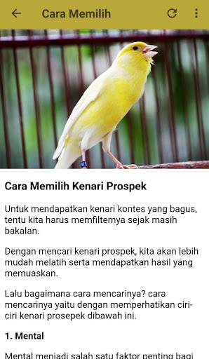 Download Masteran Kenari Mp3 Offline Free For Android Masteran Kenari Mp3 Offline Apk Download Steprimo Com