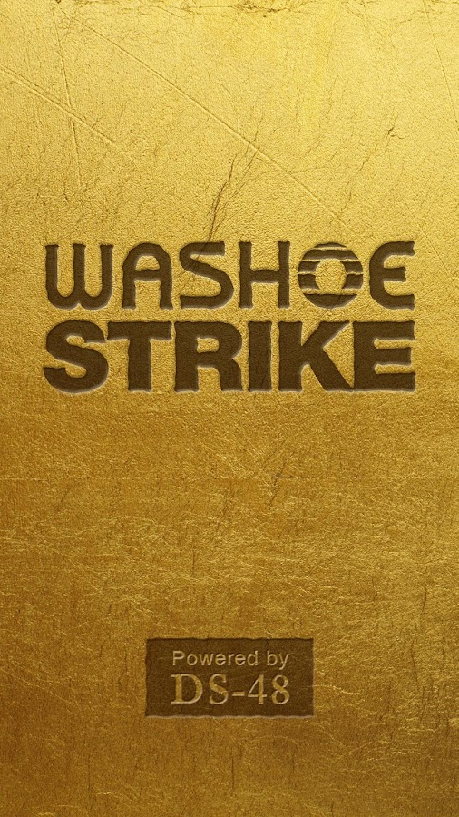 The Washoe Strike- screenshot