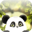Panda Chub Live Wallpaper Free icon